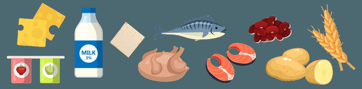 Eiweisshaltige Lebensmittel-