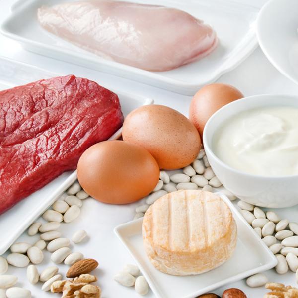 Wissenswertes-zur-Mischkost-Mahlzeit EW-