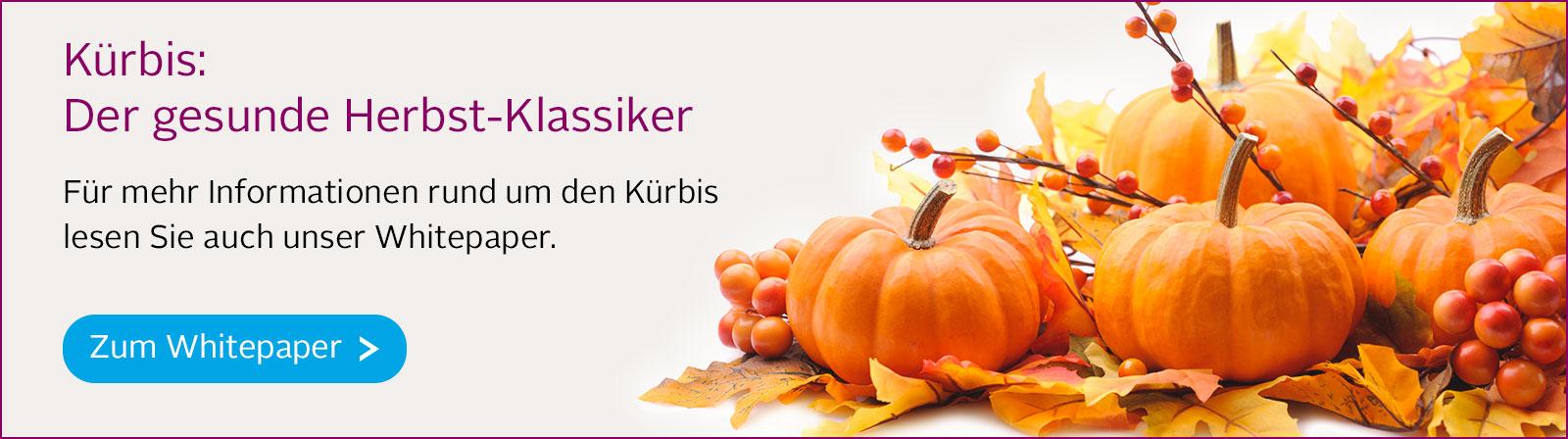 Banner kuerbis-
